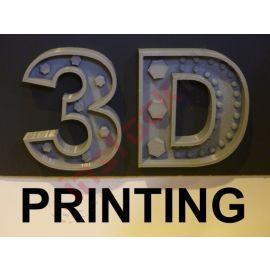 Custom 3D Printing Services (10 Gram)